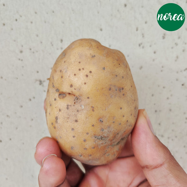 Organic Aloo (potato) Vegetables NOREA