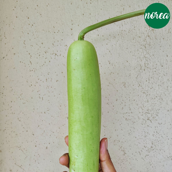 Organic Lauki (bottle gourd) Vegetables NOREA 1kg