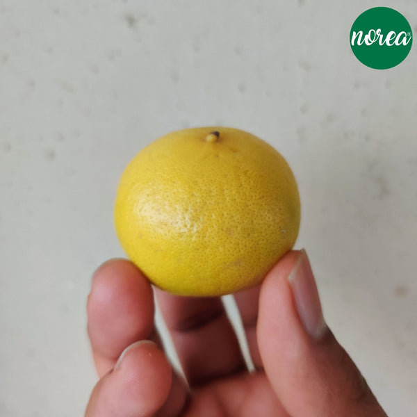 Organic Nimbu (lemon) Vegetables NOREA 500g