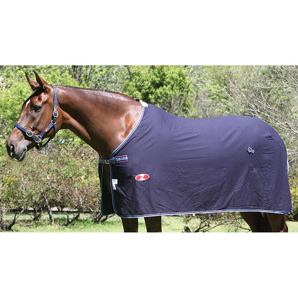 Zilco Defender Dress Cotton Rug