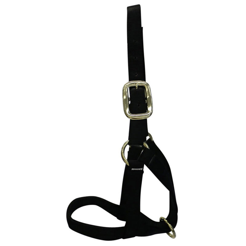 Nylon Cow Halter