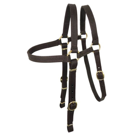 Nyla Web Barcoo Bridle Extended Head Brass 19mm