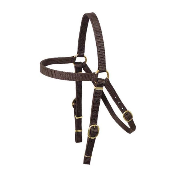 Nyla Web Barcoo Bridle Brass 19mm