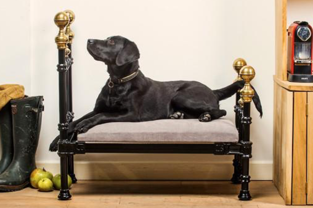 bespoke raised metal dog bed