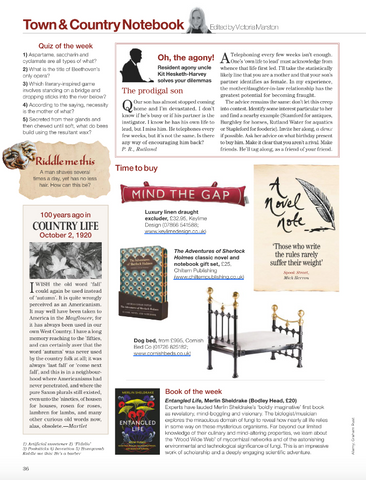 The Country Life Magazine featuring The Cornish Bed Company Dog pet Bed