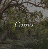 Camo Green Ugg Boot Colour Swatch Inspiration