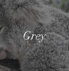 Grey Ugg Boot Colour Swatch Inspiration