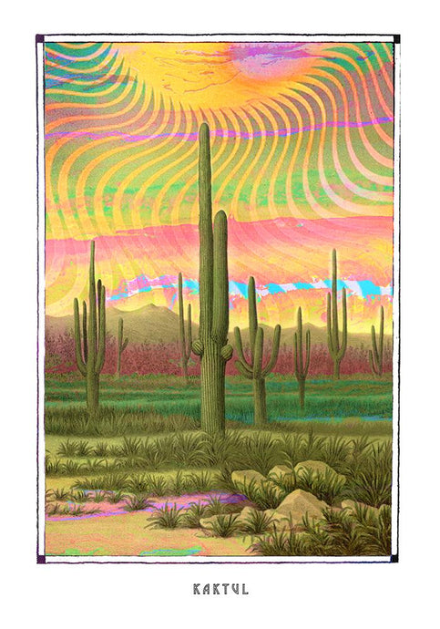 Psychedelic Mescaline cactus poster for your House and home office decor