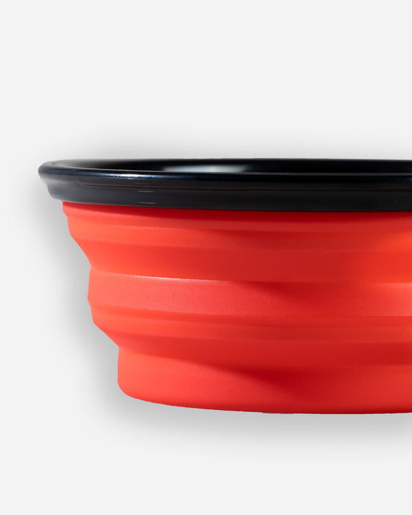Adam's Collapsible Dog Bowl