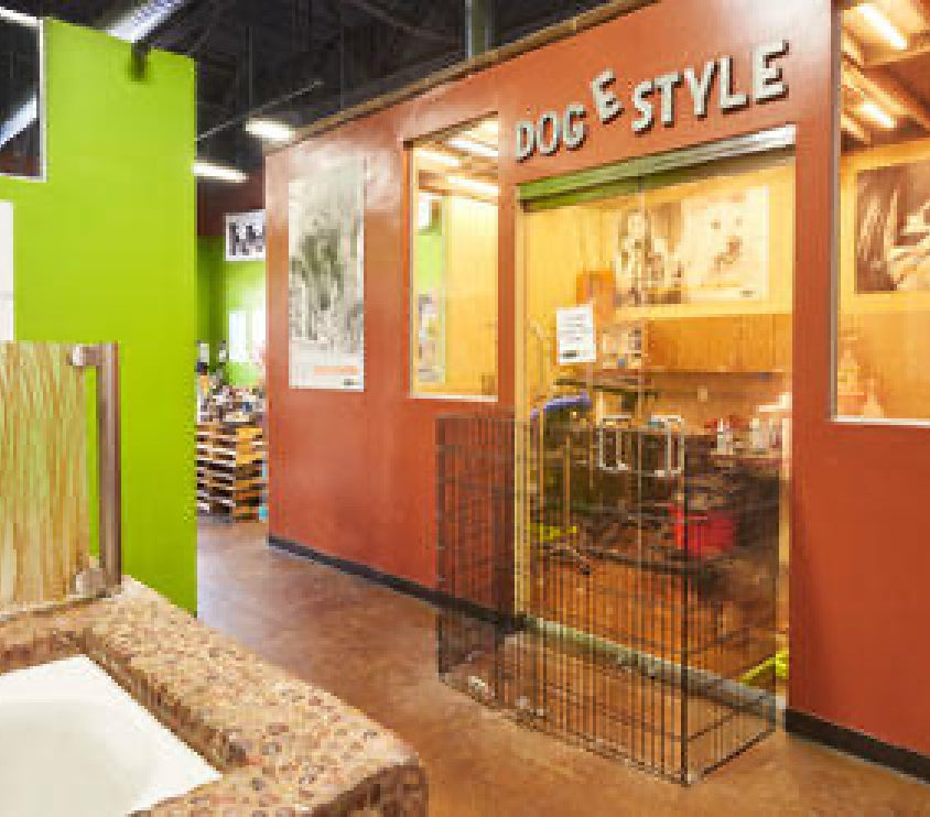 dog-e style grooming station at our Torrey Hills location