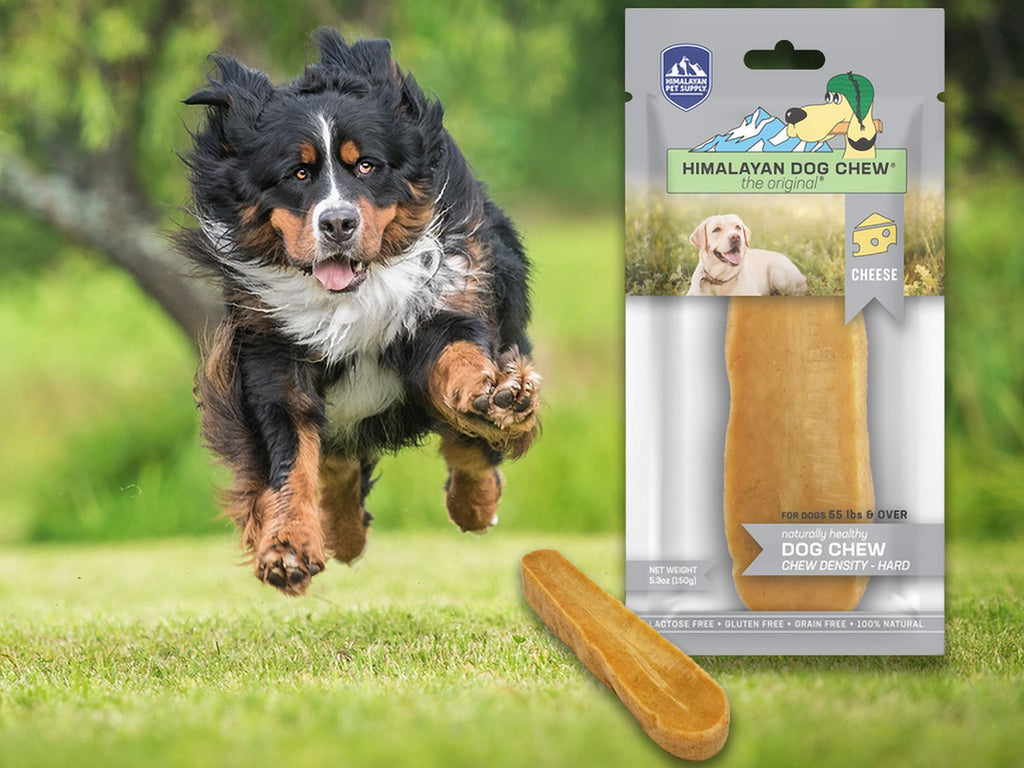 Himalayan Dog Chew Grey XL