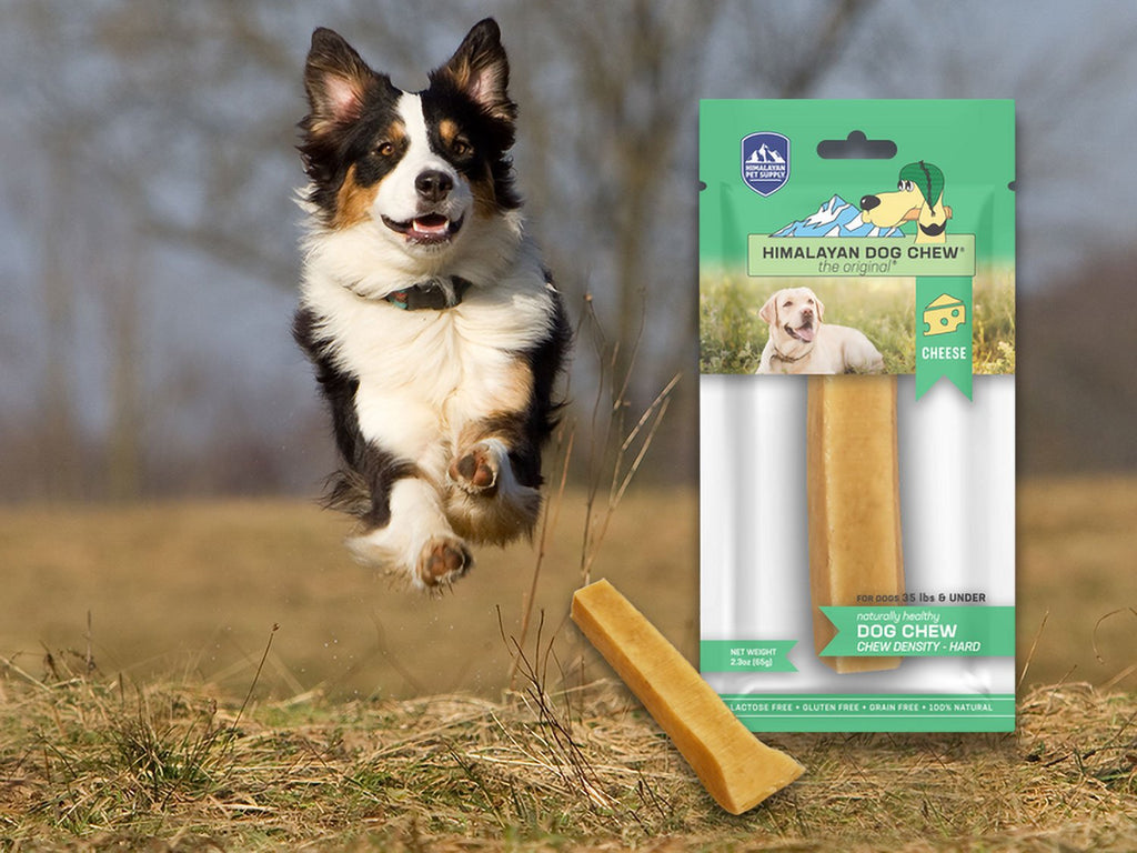Himalayan Dog Chew MD Bulk