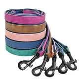Colored Leather Leashes