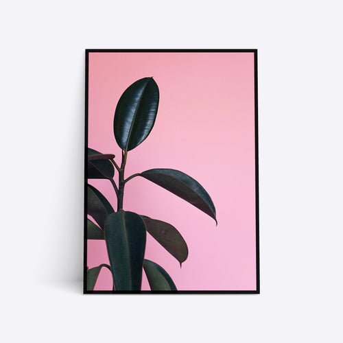 Green on Pink plante plakat i ramme