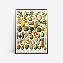 Indlæs billede til gallerivisning Fruits illustration plakat i ramme