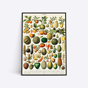 Fruits illustration plakat i ramme