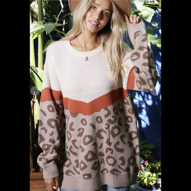 Flying V Color Block Leopard Sweater