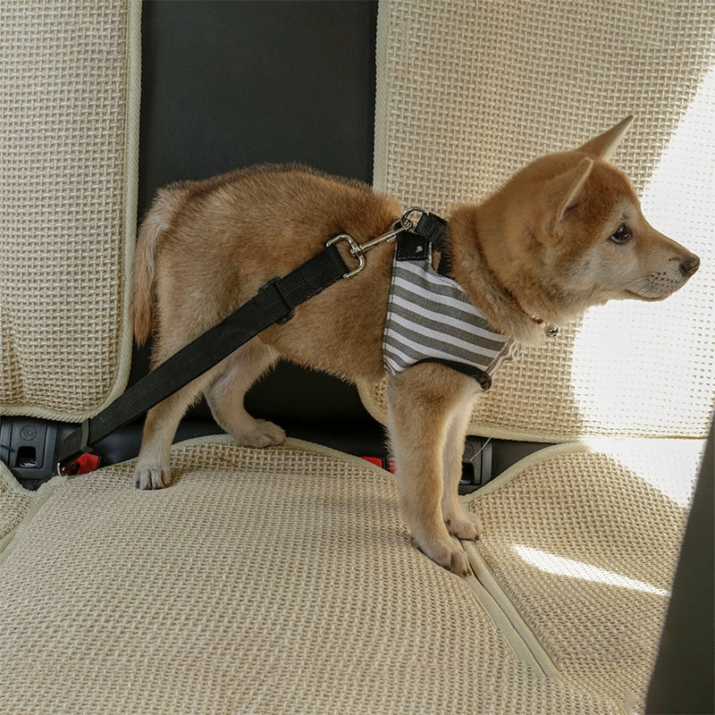 TAILUP Dog Car Seat Belt Safety Protector - Order It All