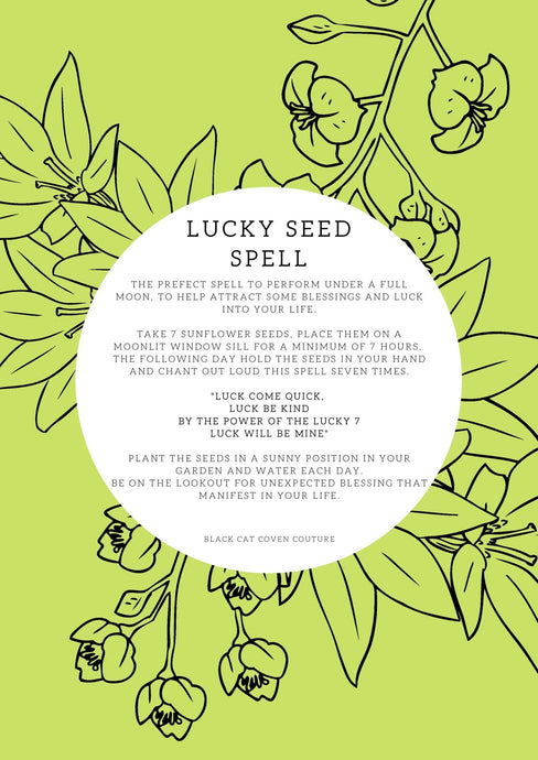 FREE PRINTABLE Book of Shadows: Full Moon Lucky Seed Spell