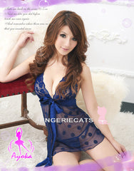 Appealing Sheer Chemise - LingerieCats