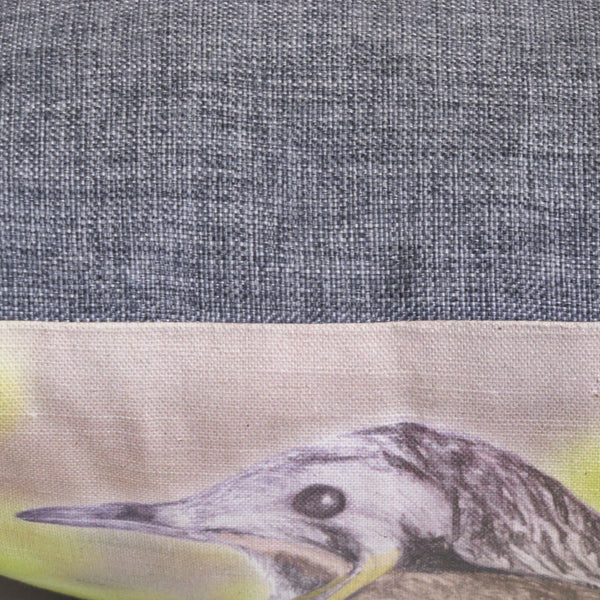 wattlebird cushion cover