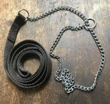 "All In One 30"" 13mm Webbing Show Lead With Chain 14"" - 22"""