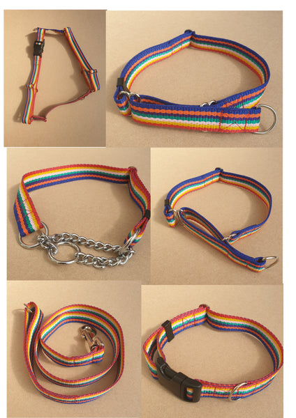 25mm Rainbow Web Dog Leads Collars Harnesses
