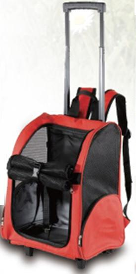 Saba Pet Safe Carrier