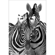 Zebra Art by Nadya Neklioudova Canvas - 118cm x 80cm