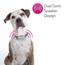 Trainer Ultrasonic Pet Bark Control Collar with Remote (Shock Free)