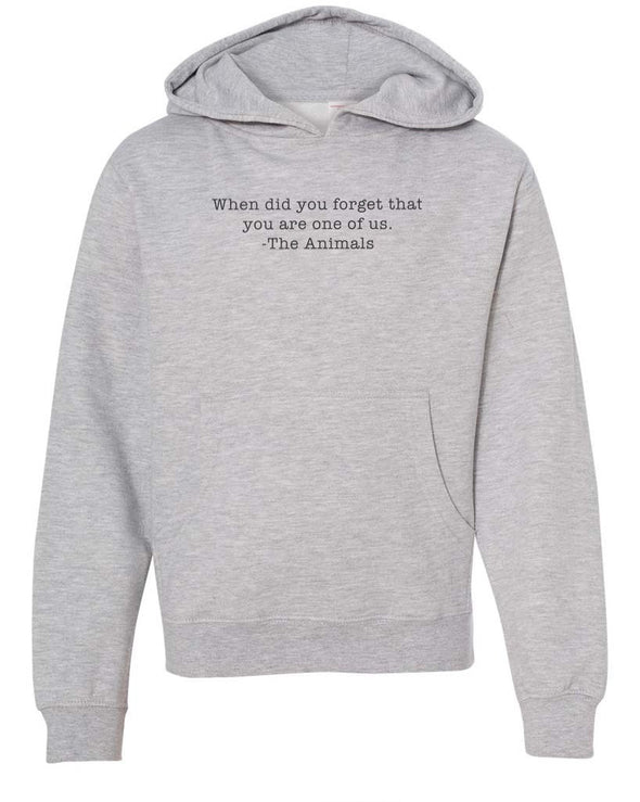 Youth Boys | When Did You Forget | Hoodie