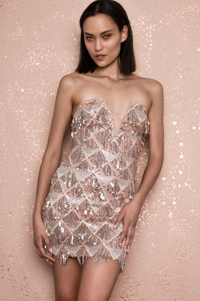 Nobu Sequin Nude Dress