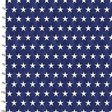 3 Wishes American Spirit by Beth Albert 16064 Navy Stars