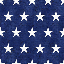 Load image into Gallery viewer, 3 Wishes American Spirit by Beth Albert 16064 Navy Stars