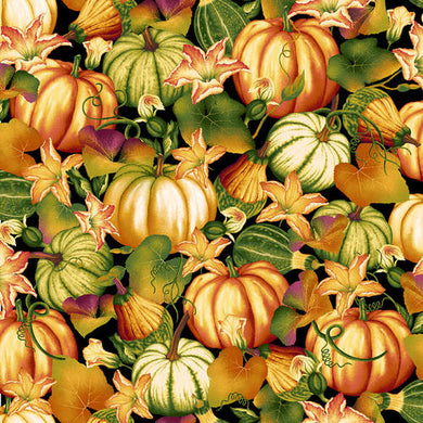 Autumn Time - Pumpkin Patch