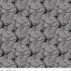 Riley Blake CAT Rocks Grey Quilt Fabric By The Yard  C9101-Gray