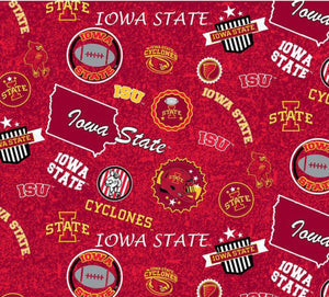 Iowa State Home State Cotton - ISU 1208 Sykel
