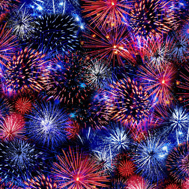 Timeless Treasures Fabric WE THE PEOPLE FIREWORKS C8323