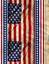 Load image into Gallery viewer, Timeless Treasures Fabric WE THE PEOPLE CONSTITUTION FLAG Repeating Stripe C8318