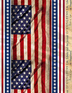 Timeless Treasures Fabric WE THE PEOPLE CONSTITUTION FLAG Repeating Stripe C8318