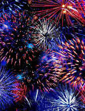Load image into Gallery viewer, Timeless Treasures Fabric WE THE PEOPLE FIREWORKS C8323