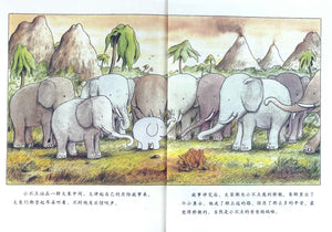 Wilma The Elephant 4-Book Set