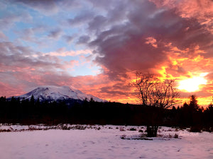 Mount Shasta Sunrise card