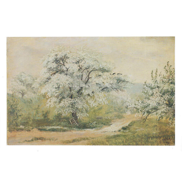 Apple Blossom Notecard