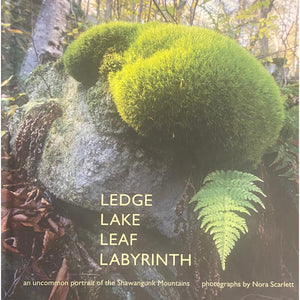 Ledge Lake Leaf Labyrinth
