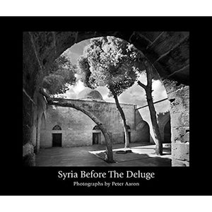 Syria Before the Deluge
