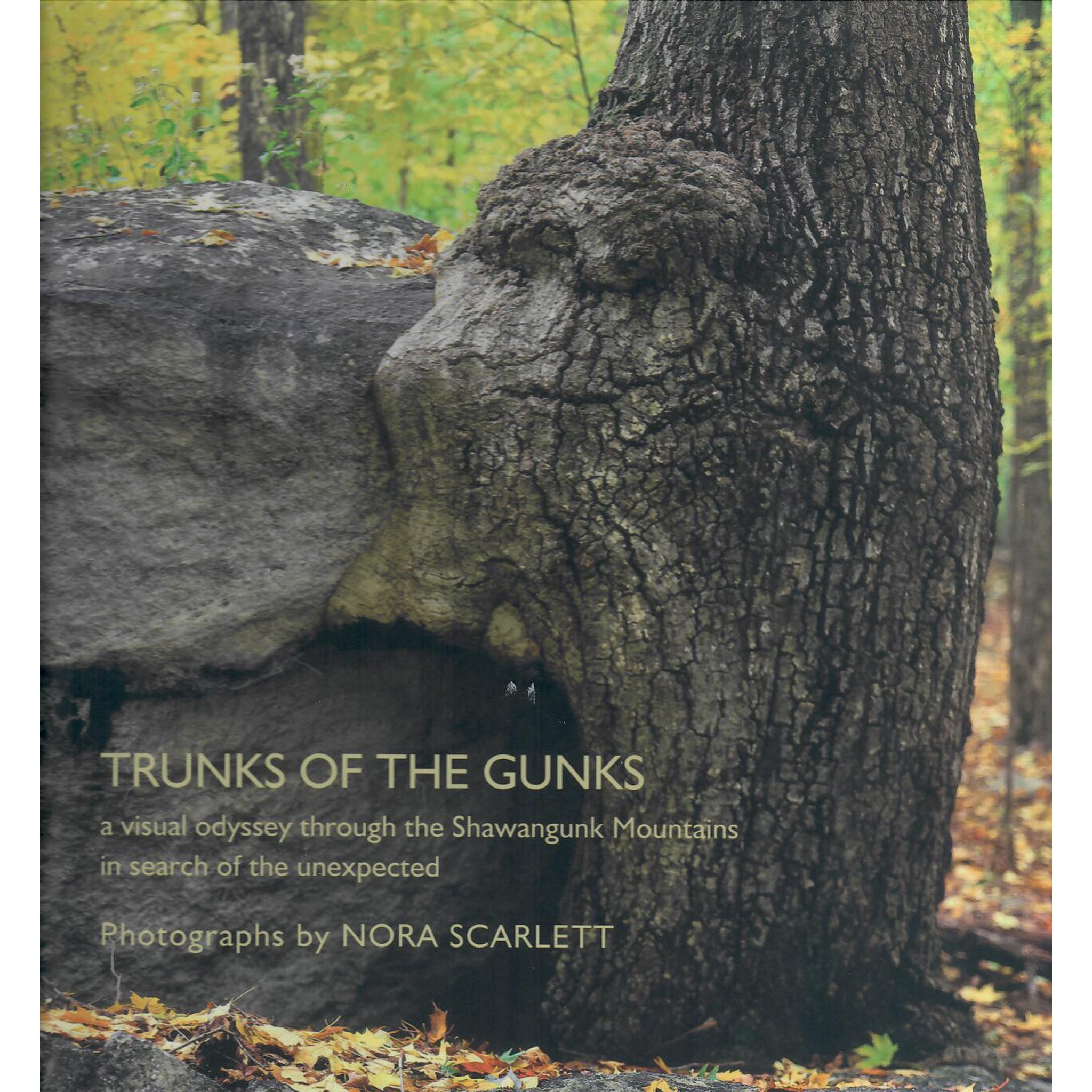 Trunks of the Gunks