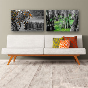 Fine Art Metal Print, NOLA Phototgraphy, Orange Tree & Fence