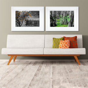 Fine Art Print, New Orleans, Orange Tree & Rustic Fence