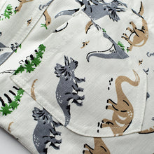 Load image into Gallery viewer, Loose Boys Shorts Summer Children Beach Wear Dinosaur Pattern Boys Bottom Pants 2~7 Ages Kids Boys Character Sports Shorts CI031